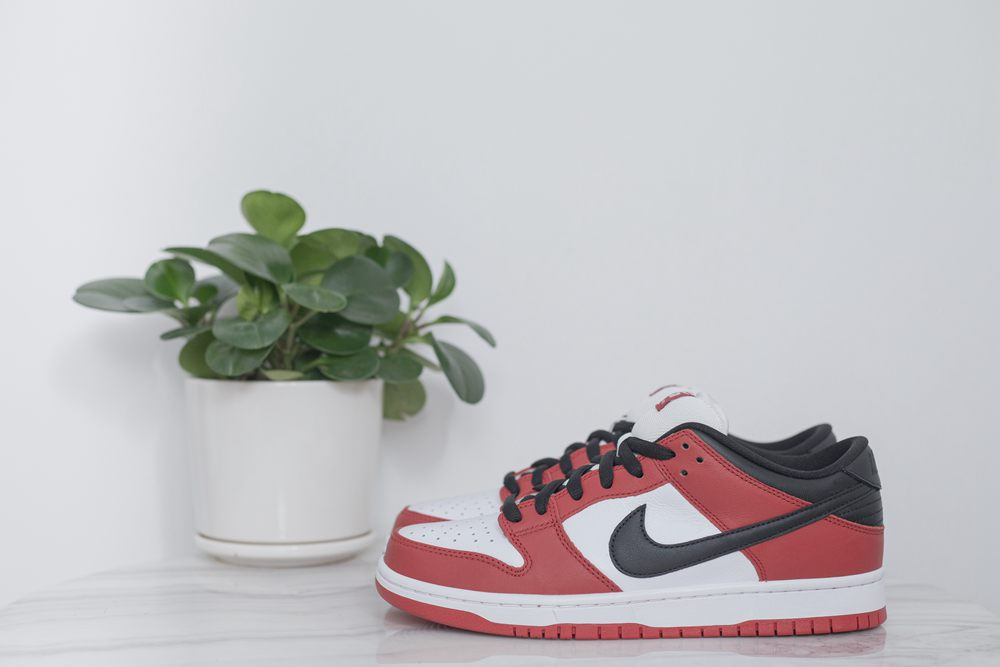 "SB Dunk Low ""Chicago"""
