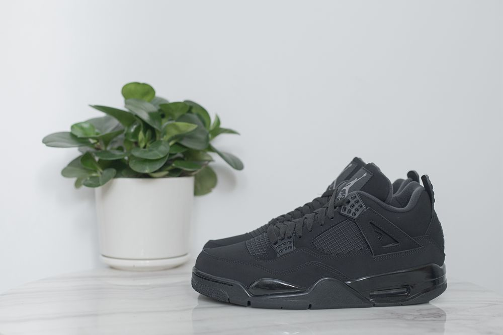 Air Jordan4 4BLACK CAT2020