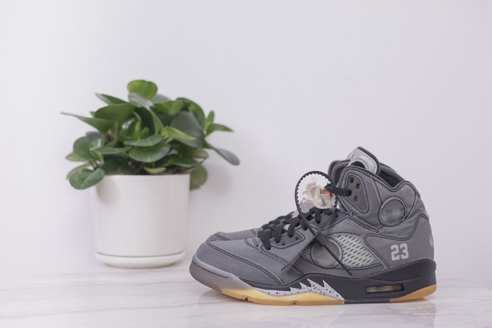air Jordan 5 retro sp muslin
