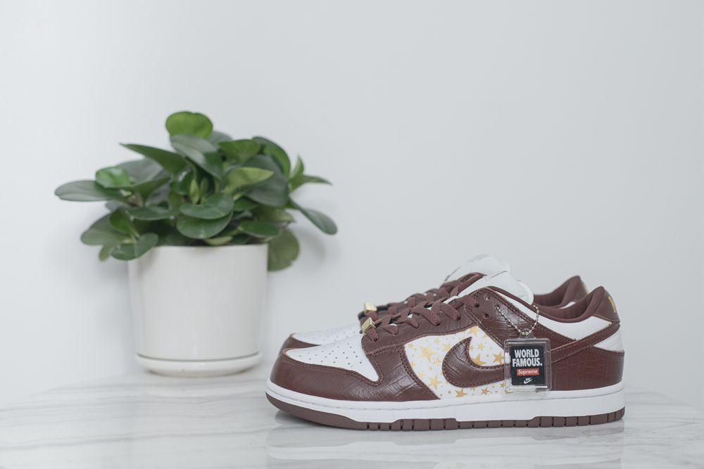 Supreme x Dunk Low Brown