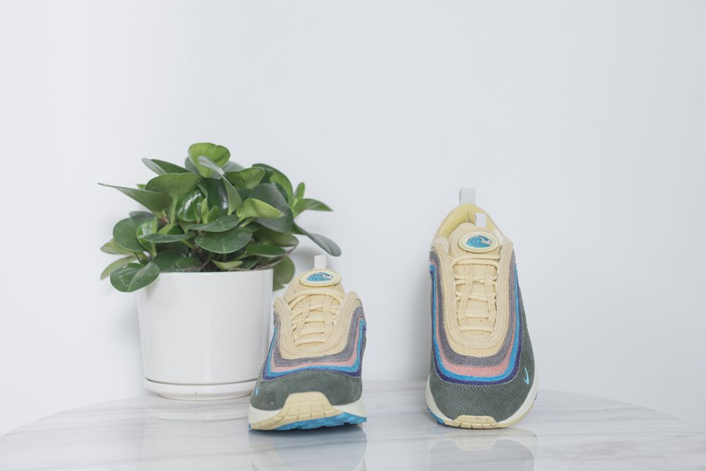 Max1 Max1 Sean Wotherspoon